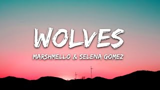 Download Lagu Selena Gomez, Marshmello - Wolves (Lyrics / Lyric Video) Gratis STAFABAND