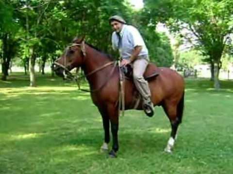 Como andar a caballo