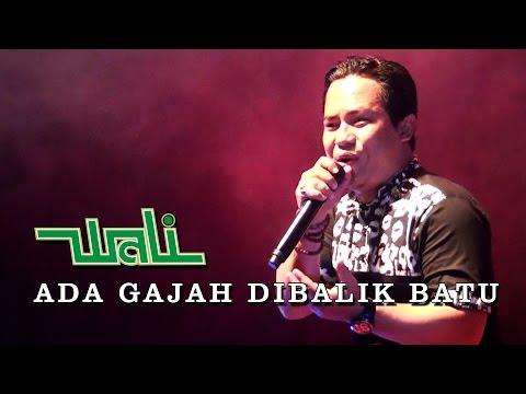 download lagu ADA GAJAH DI BALIK BATU - WALI BAND TERBARU KONSER KAPUAS 2016 KALTENG gratis