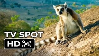 Island of Lemurs: Madagascar TV SPOT 1 (2014) - Nature Documentary HD