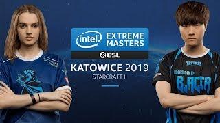 SC2 - Scarlett [Z] vs. Bunny [T] - Group D Round 4 - IEM Katowice 2019