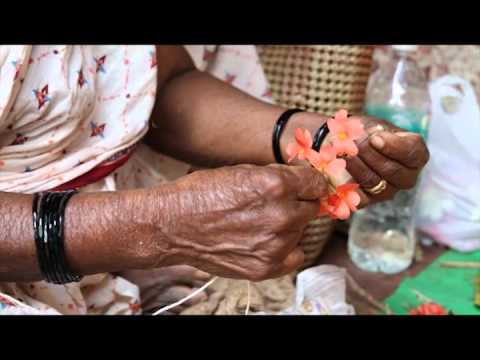 Short Film: Culture Aangan -  Eco Cultural Tourism India - The Freedom of Expression Movement