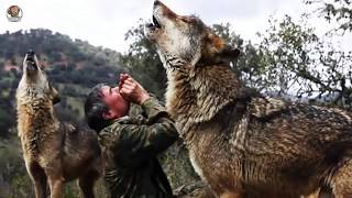 8 NIÑOS que Fueron Criados por ANIMALES (Niños Salvajes) - New Best