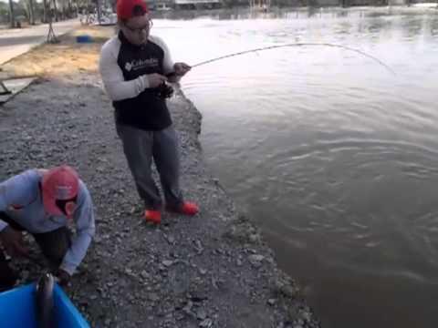 Malaysia Tester Alan with his toman at rawang pond