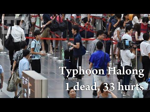 286. Typhoon Halong - 1 dead, 33 hurts