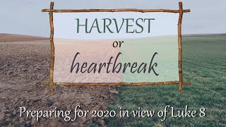 HARVEST or heartbreak (1/5/20)