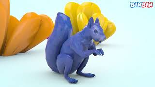 Learn Colors with Squirrel For Kids  Animals   BinBin Educational