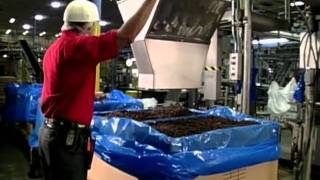 Video: Raisin Processing and Packaging - How It Works