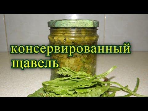 Щавель на зиму. консервированный  пятиминутка