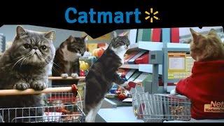 Cat Supermarket! (2016)