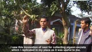 Promoting Local Innovation  Nepal (ProLinnova)