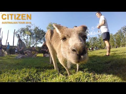Citizen - Australian Tour 2015