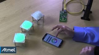 Atmel: ZigBee Light Link System Demonstration