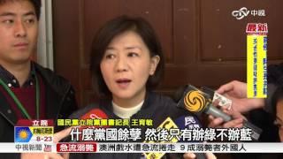 陳師孟「廢物說」惹議 立院暫緩處理監委補提名