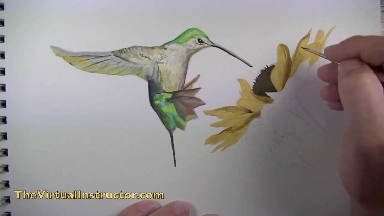 Images Of Birds To Paint
