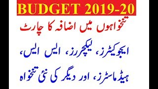 Budget 2019-20 | ESE, SESE, SSE, Lecturer, Head, SS | Pay Increase News | Pay Chart 1st July 2019