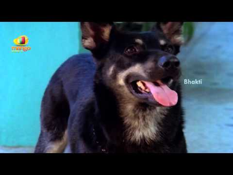 Sindhoora Devi Movie Scenes - Dog Trying To Find Baby Shamili's Location - Vivek, Kanaka video