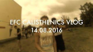 Download EFC Calisthenics Trainings Vlog 14.08.2016 3Gp Mp4