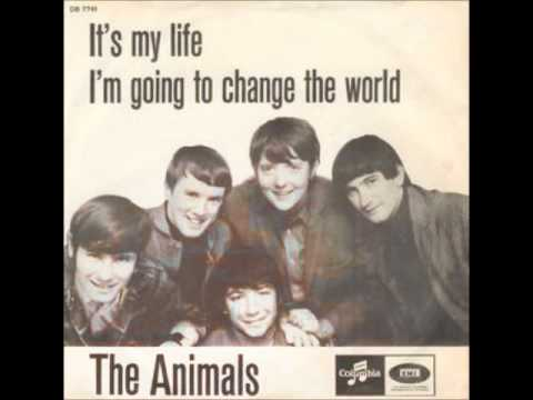 The Animals It's My Life video