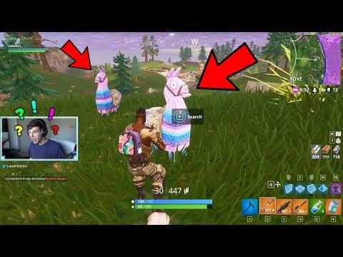 LUCKIEST FORTNITE ROUND IVE EVER PLAYED..*2 LLAMAS* | Fortnite Battle Royale Gameplay