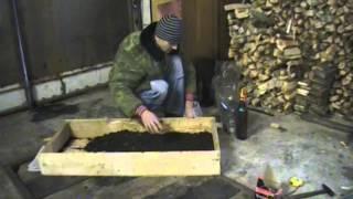Выращивание шампиньонов дома (часть1)