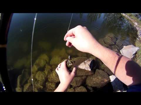Rexburg, ID Smallmouth & Largemouth Bass Fishing - GREAT Idaho FISHIN'