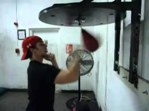 Speed Bag and Heavy Bag Training w/Tricks (Looking for De La Hoya or Freddie Roach 4 Training) Image 1