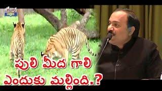 Gali Janardhana Reddy Adopts Tiger Cubs, Elephant Calf | Jordar News | HMTv