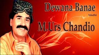 Download M.Urs Chandio - Dewana Banae 3Gp Mp4
