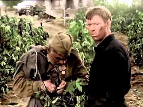 Отец солдата, сцена у виноградника