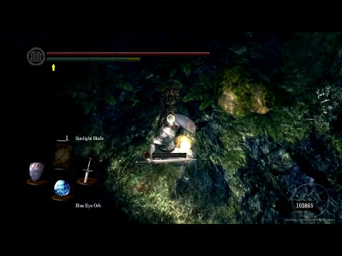 The Lore of Dark Souls - Dark Souls Lore: Marvelous Chester
