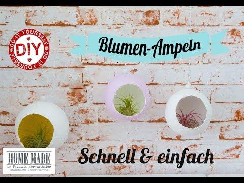 How to: Tillandsien-Blumenampel I Deko Inspirationen selbstgemacht I Gipskugel