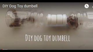 DIY Dog Toy dumbell
