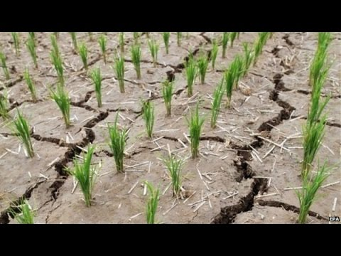 North Korea says it faces worst drought in a century