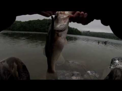 Canoe Creek Trout and Bass Fishing