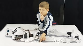 Интерактивная выставка роботов