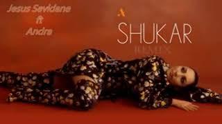 Andra Shukar