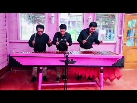 Marimba versión.Son del diablo