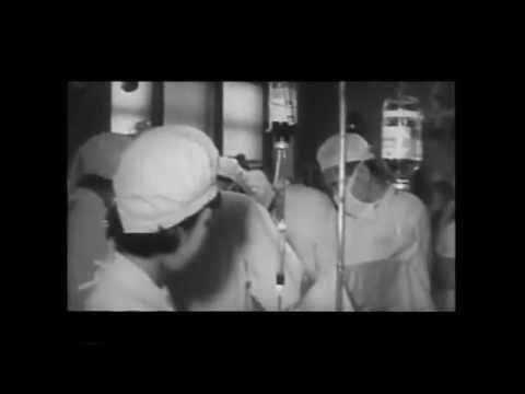 昭和40年  血液センター開設、全国菓子博開く
