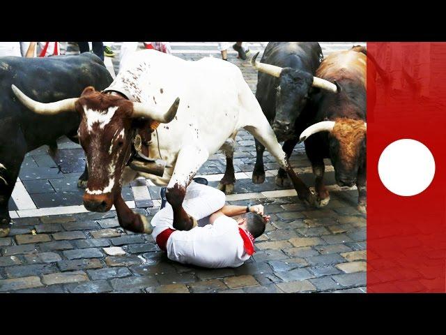 Pamplona bull run: 11 gouged on 1st day