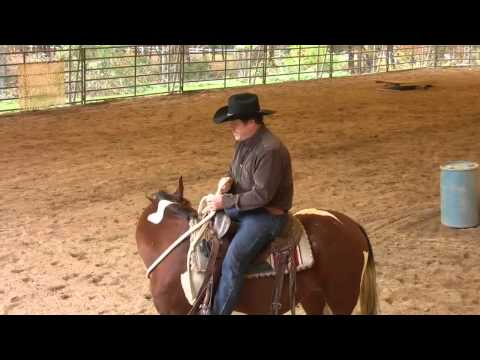 Arena work under saddle 2 - SCEA Rescue horse