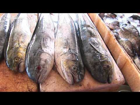 Travel in Bali - Jimbaran Fish Market HD