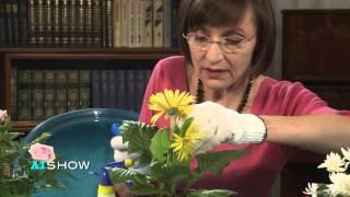 Provocare AISHOW: Corina Fusu într-un test de botanică