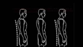 How to grow taller naturally. Exercises & methods inside.