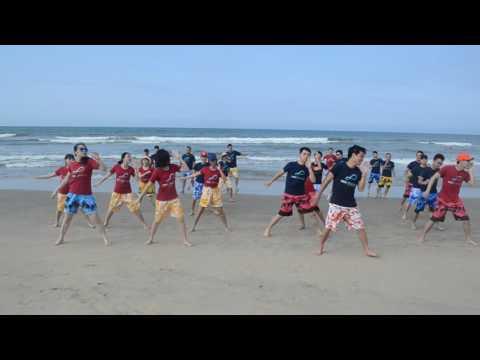 Media Max Japan (Vietnam) - Company trip 2016  flashmob dancing