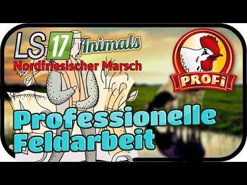Professionelle Feldarbeit #072 ANIMALS - LS17 NORDFRIESISCHER MARSCH ★  FARMING SIMULATOR 17