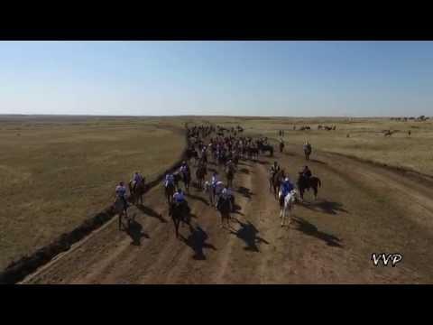 Аламан байге 2015 Астана 550-летие Казахского Ханства (Астана Казахстан Astana Kazakhstan)