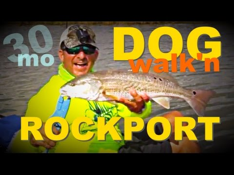 30milesOut.com~ TOP WATER WALK THE DOG kayak fishing ROCKPORT TEXAS estes flats