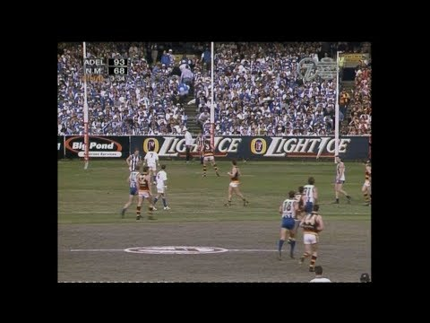 AFL 1998 Grand Final Adelaide Vs North Melbourne