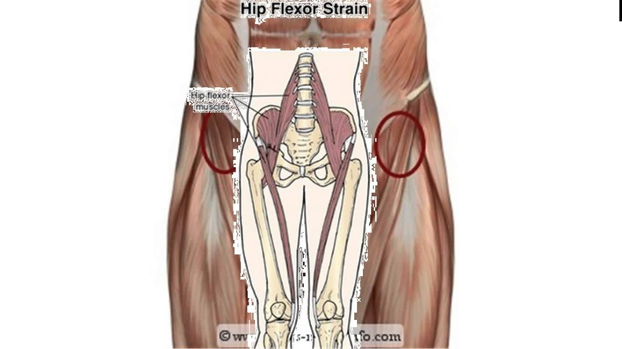 Strained Hip Flexor Squats Hip Flexor Strain